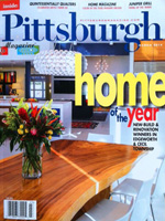 cover of pittsburgh magazine home of the year 2014 edition