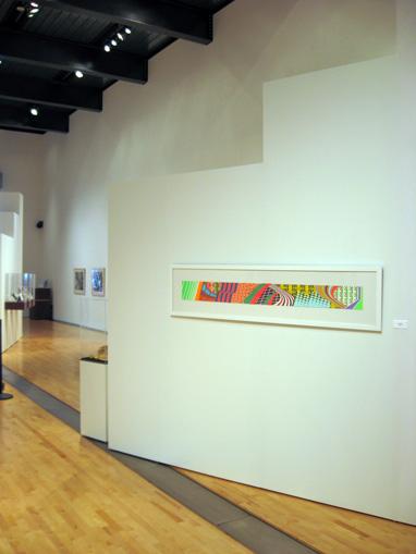 Grant Wiggins in Tempe Center for the Arts Biennial 2008